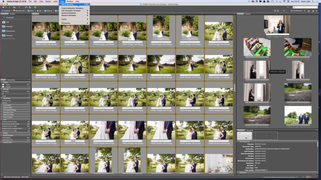 Illustrive photo showing screenshot of adobe Bridge illustrating How to Name Images for SEO article