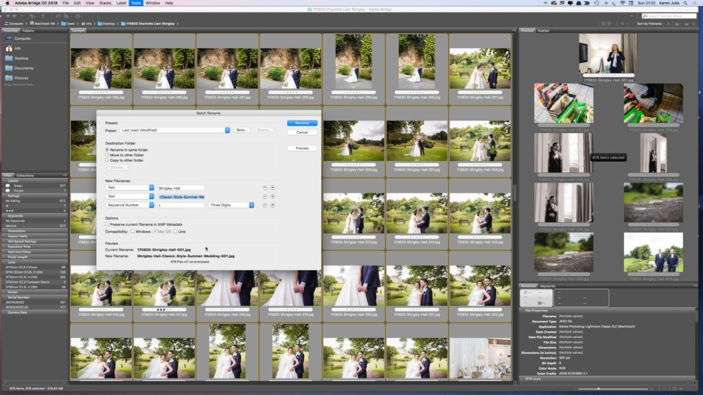 How to Name Images for SEO in adobe Bridge screenshot