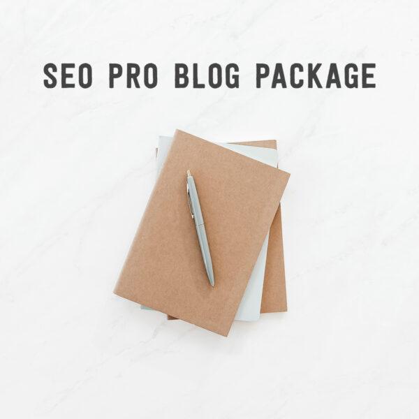 seo pro blog package illustration